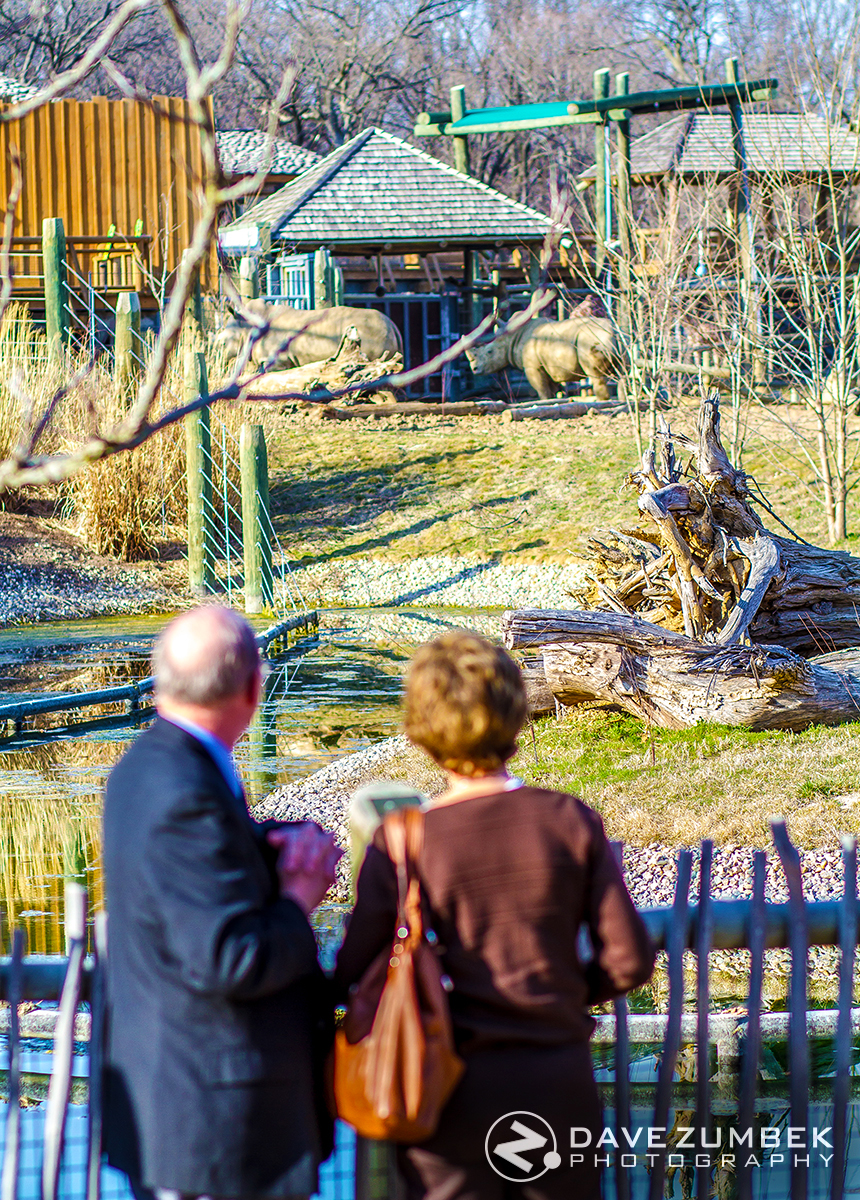 Wedding guests admiring the African Animal Exhibit at the Peoria, IL Glen Oak Zoo.
